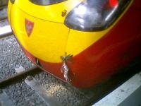 Virgin train and bird impact